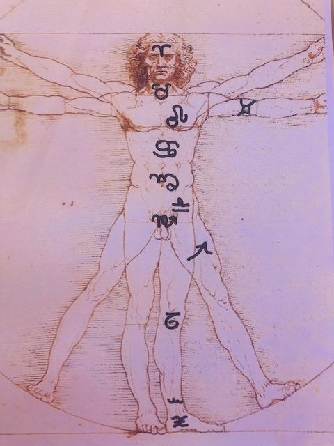 Paracelso astrologia y medicina